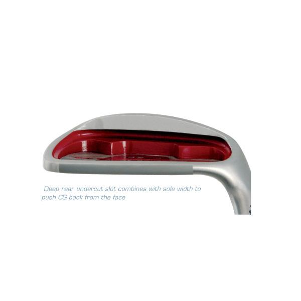 Golf Iron heads- 765 WS Irons